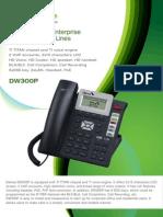 DW300P Datasheet