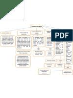 mapa conceptual Carlos Salas.docx