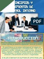Principios de Control Interno