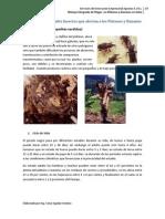 MIP Insectos y Nematodos