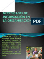 NECESIDADES DE INFORMACIÒN EN LA ORGANIZACIÓN