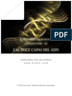Doce Capas Del Adn