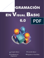 Visual Basic Manual