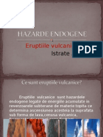 HAZARDE ENDOGENE
