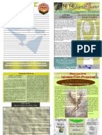 Boletín Semanal El Conquistador del 15 de Febrero del 2009