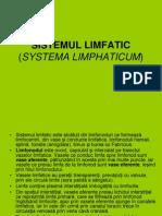 sist limfatic