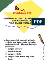 3.Aktivator+Inhibitor