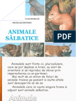 animale salbatice