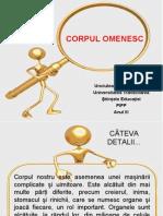 CORPUL OMENESC PPT