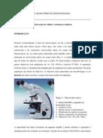 MIB1-_Microscopia