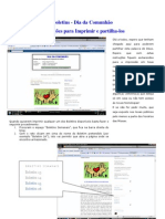 20090206 Instruções Para Impressao