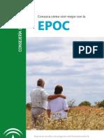 Guia Informativa EPOC