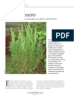 romero antioxidante.pdf