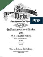 Schumann l'oiseau prophète