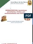 Dermatopatias, bacterianas, virales y por envenenamiento mas frecuentes.pdf