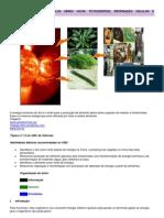 md-ef-ci-21.pdf