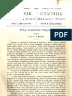 75993407-Glasnik-Zemaljskog-Muzeja-1913-god-25-knj-3