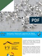 Especial Fotográfico del Santuario Nacional Lagunas de Mejía