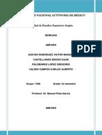 Apuntes Definitivos de Amparo Dr Plata