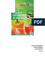Curso de Plagas y Enfermedades en Hortalizas