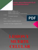 Patologia i Unidad - Investigacion Formativa