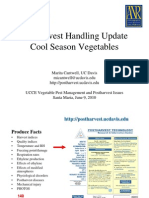 Postharvest Handling Update Cool Season Vegetables