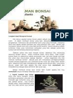 pemahaman bonsai