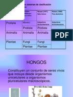 hongos-def1