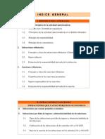 Manual Infracciones y Sanciones Curso Tec Hac (2009)