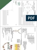 13. Regnul animale  Viermi cilindrici, inelati.pdf