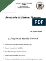 Anatomia Do Sistema Nervoso