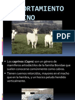 `presentacion caprinos.pdf