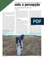 Artigo Aprimorando a percepção.pdf