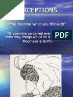 OB_Perceptions.19134329.ppt