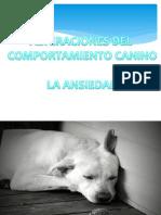 ANSIEDAD EN EL PERRO.pdf