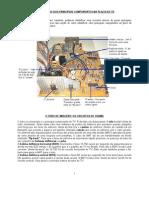 Noções de Televisão (circuitos e consertos)