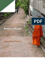 Between Souls 2013
