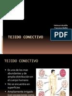TEJIDO_CONECTIVO presentacion