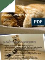 comportamineto felino.pdf