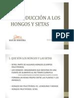 (INTRODUCCIÓN A LOS HONGOS Y SETAS COMP)