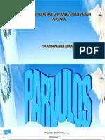 PLANIFICACION COMPLETA