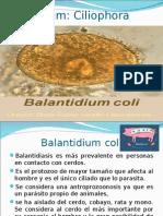 Clase V_Balantidium Coli