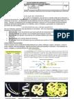 Guia 2 Las Proteinas 1p 9 2013