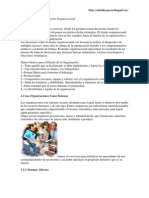 Concepto Importancia Diseño Organizacional