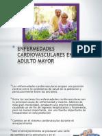 Enfermedades Del Aparato Cardiovascular
