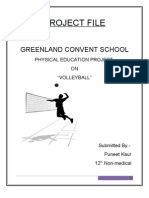 Project File - Volleyball