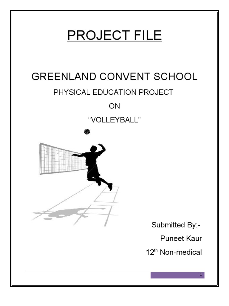 Project file volleyball strategy for the preparation of preliminary project file volleyball malvernweather Images