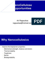 nanocellulose opportunities.pdf