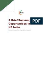 Brief Profile of NE 2