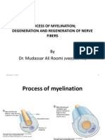 Degeneration and Regenration of Nerve Fibers by Dr. Roomi